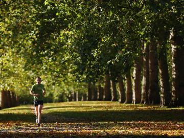 Runners en otoño