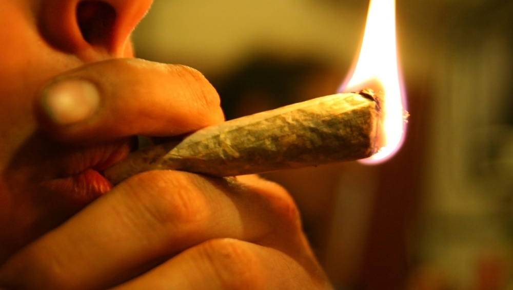 Consumidor de cannabis