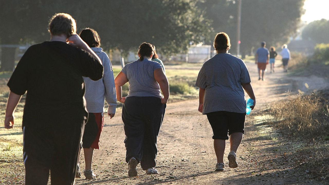Cuantos km caminar por dia para bajar de peso