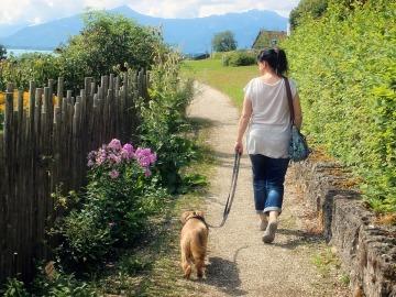 Una mujer da un paseo por el campo