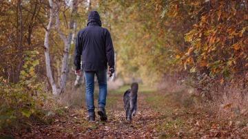 Disfrutando de un paseo en la naturaleza