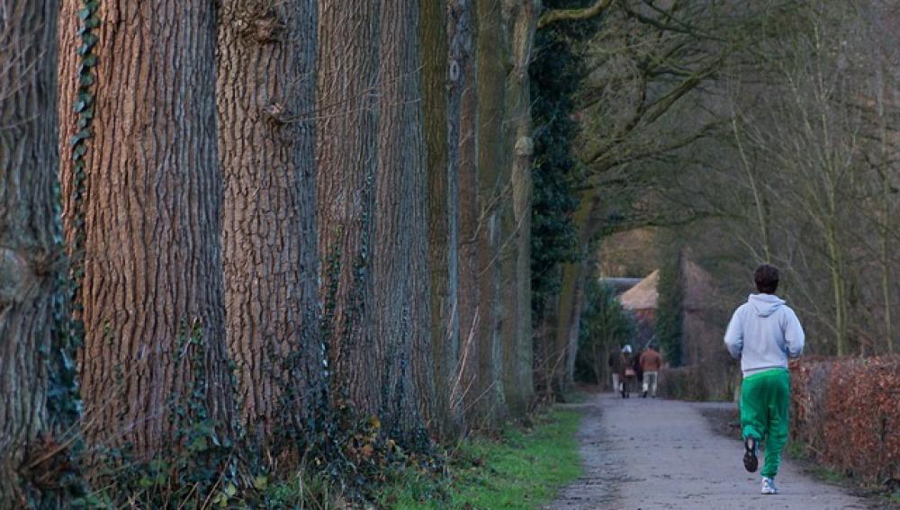 Un corredor por el parque