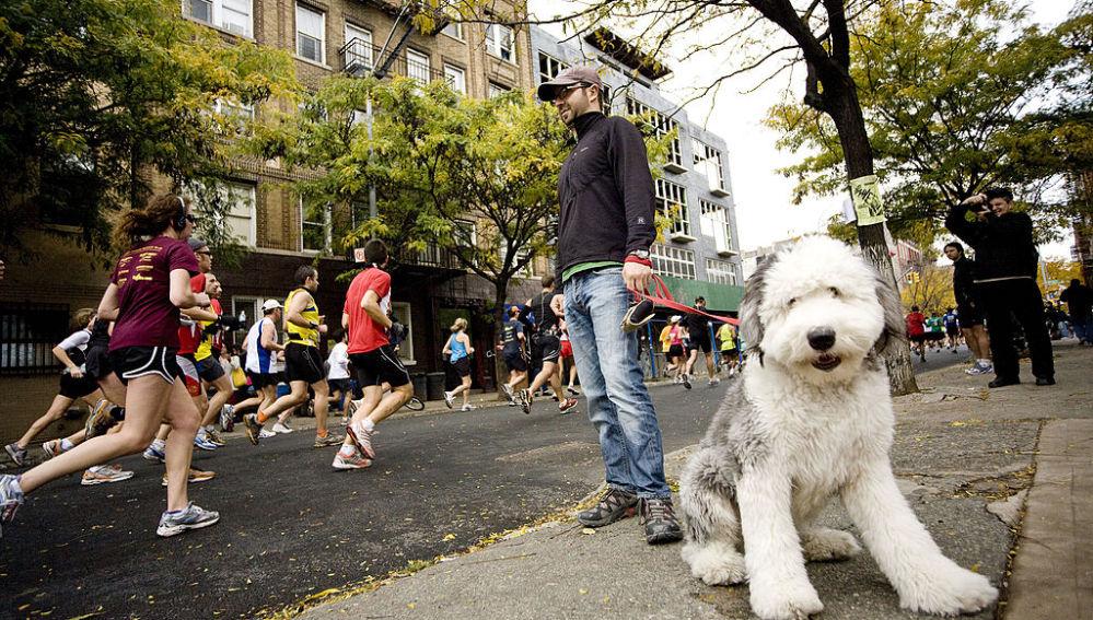 Un espectador con su perro en la Maratón de Londres