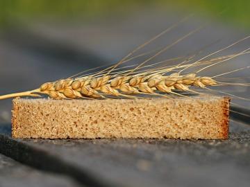 Pan de grano entero