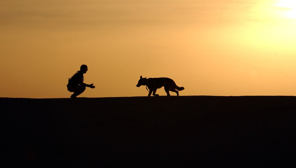 Un hombre espera a su mascota