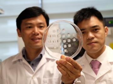 Los investigadores que han desarrollado el parche